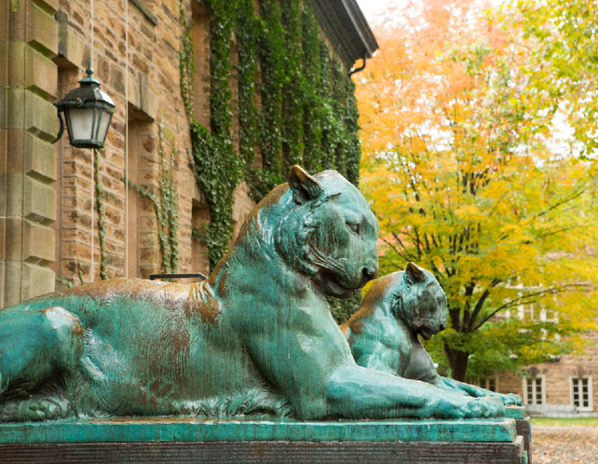 Two tiger statues in front of Nassau Hall
